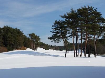 ゴルフ場の雪景色