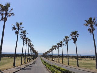 館山CC入口